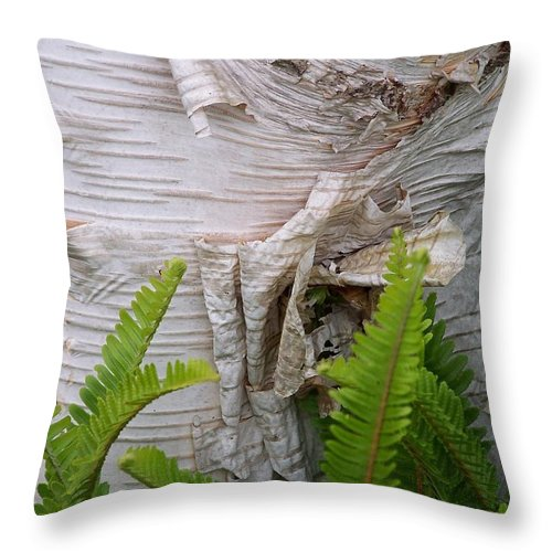 Tree Throw Pillow featuring the photograph Birch Fern by Gale Cochran-Smith