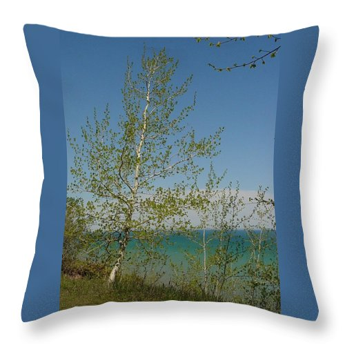 Birch Tree Throw Pillow featuring the photograph Birch Tree Over Lake by Anita Burgermeister
