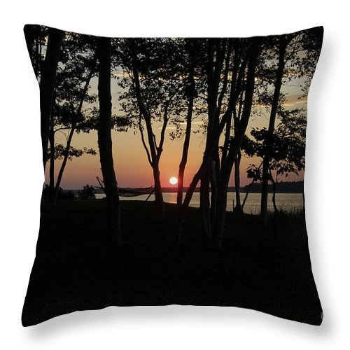 Birch Throw Pillow featuring the photograph Birches Watch The Sunset by Faith Harron Boudreau