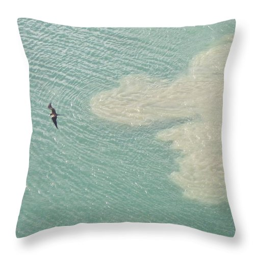 Bird Throw Pillow featuring the photograph Bird And Churning Sand by Michelle Miron-Rebbe