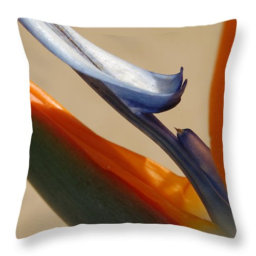 Tropical Throw Pillow featuring the photograph Bird Of Paradise by Jean Booth
