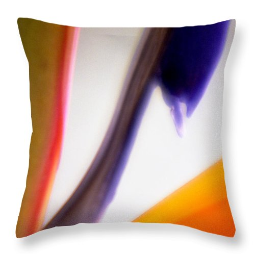 Macro Throw Pillow featuring the photograph Bird Of Paradise by Lee Santa