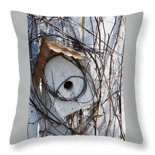 Birdhouse Throw Pillow featuring the photograph Birdhouse Brambles by Lauri Novak