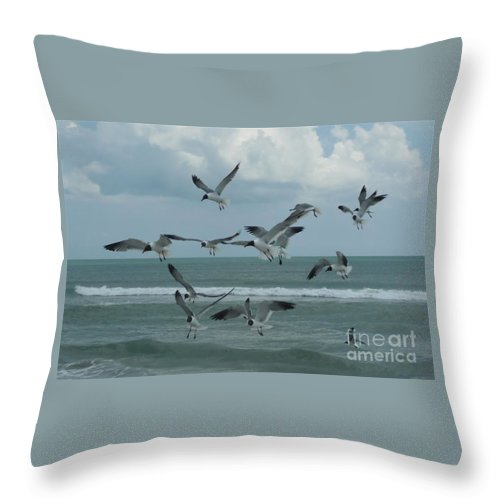 Birds Throw Pillow featuring the photograph Birds In Flight by Barb Montanye Meseroll