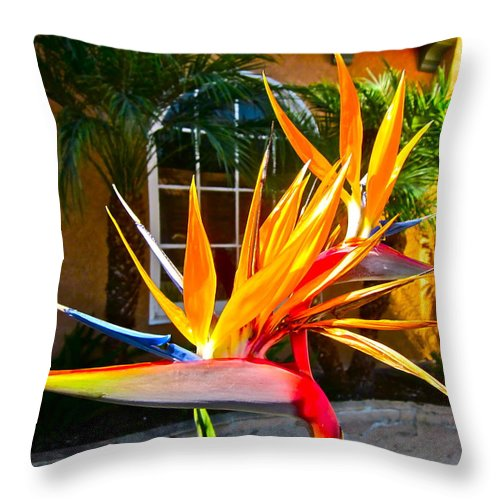 Photograph Of Bird Of Paradise Throw Pillow featuring the photograph Birds In Paradise by Gwyn Newcombe