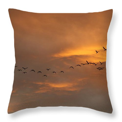 Sunsets Throw Pillow featuring the photograph Birds Over San Miguel De Allende by John Kolenberg