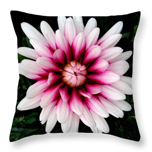 Flower Throw Pillow featuring the photograph Birst by J Andrel