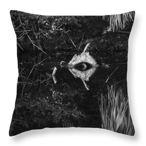 Cyclops Throw Pillow featuring the photograph Black And White Cyclops by Rob Hans