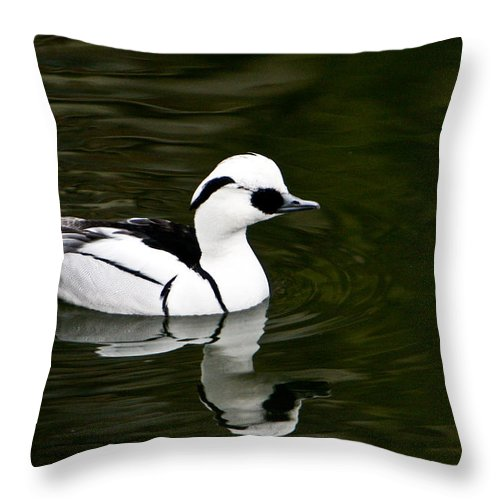 Duck Throw Pillow featuring the photograph Black And White Duck by Douglas Barnett