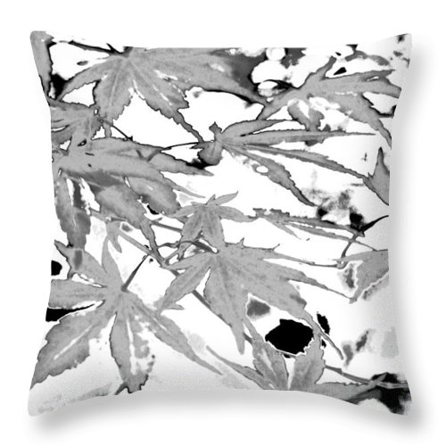 Trees Throw Pillow featuring the photograph Black And White Equalized by Gary Bartoloni