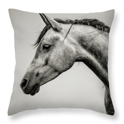 3f1ee2a596f Horse Throw Pillow featuring the photograph Black And White Horse Head by Dimitar  Hristov