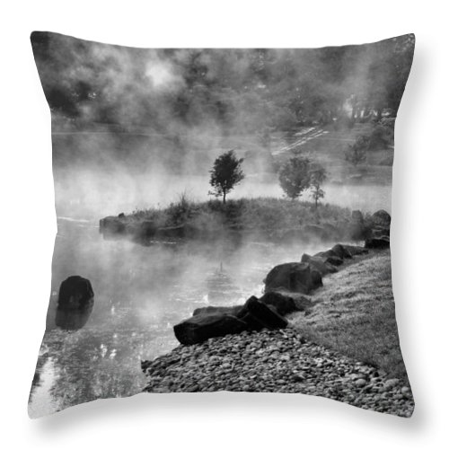 Landscape Throw Pillow featuring the photograph Black And White Japanese Garden by Gary Wilson