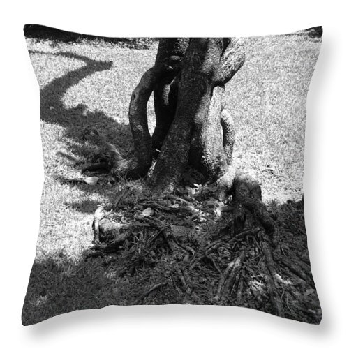 Black And White Throw Pillow featuring the photograph Black And White Roots by Rob Hans