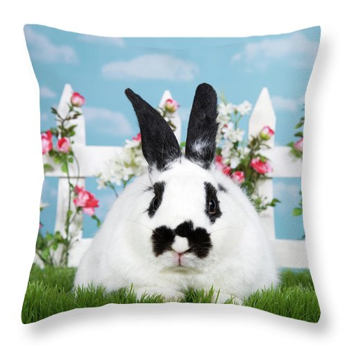 Easter Throw Pillow featuring the photograph Black And White Spring Bunny by Sheila Fitzgerald