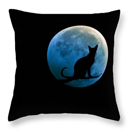 Full Moon Throw Pillow featuring the digital art Black Cat And Blue Full Moon by Marianna Mills