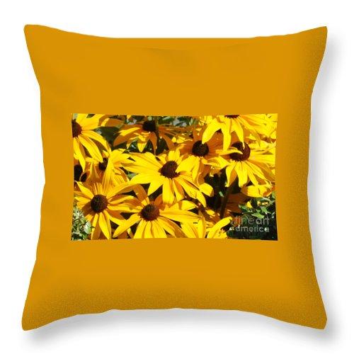 Flowers Throw Pillow featuring the photograph Black-eyed Susan by Pam Schmitt