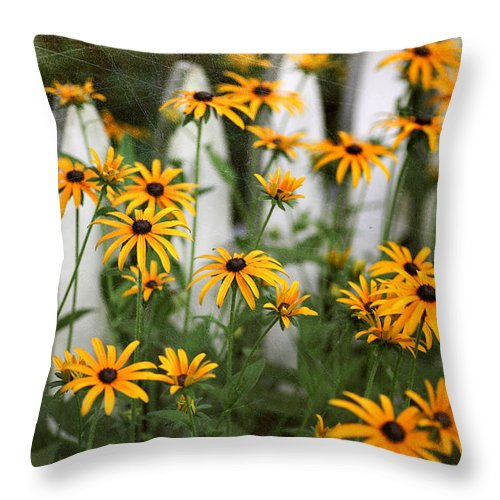 Nature Throw Pillow featuring the photograph Black-eyed Susans by June Marie Sobrito