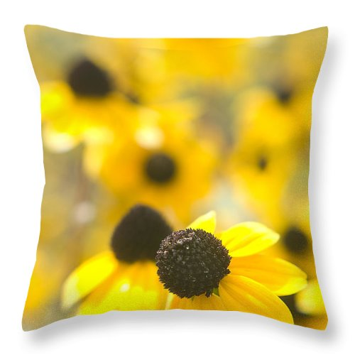 Flowers Throw Pillow featuring the photograph Black Eyed Susans by Steve Somerville