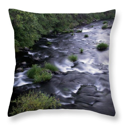 River Throw Pillow featuring the photograph Black Waters by Peter Piatt