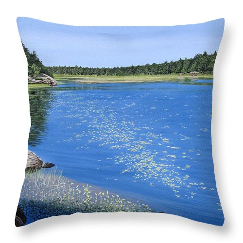Landscapes Throw Pillow featuring the painting Blackstone Bog by Kenneth M Kirsch