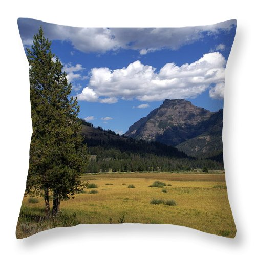 Yellowstone National Park Throw Pillow featuring the photograph Blacktail Plateau by Marty Koch