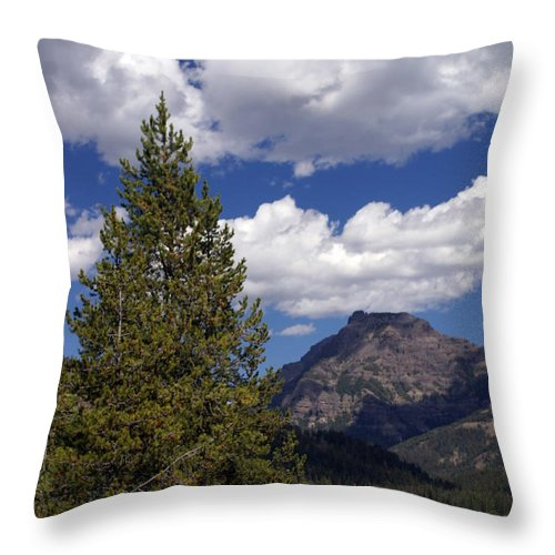 Yellowstone National Park Throw Pillow featuring the photograph Blacktail Plateau Vertical by Marty Koch
