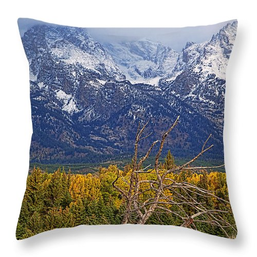 Landscape Throw Pillow featuring the photograph Blacktail Sunday Morning by Jim Garrison