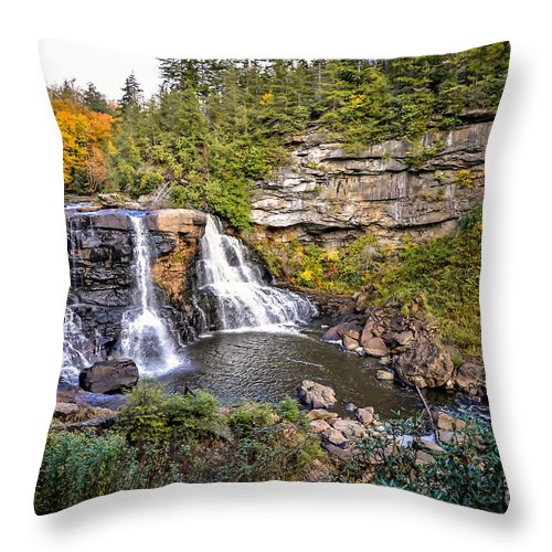 Blackwater Falls State Park Throw Pillow featuring the photograph Blackwater Falls In Autumn3836c by Cynthia Staley