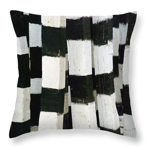 Skip Hunt Throw Pillow featuring the photograph Blanco Y Negro by Skip Hunt