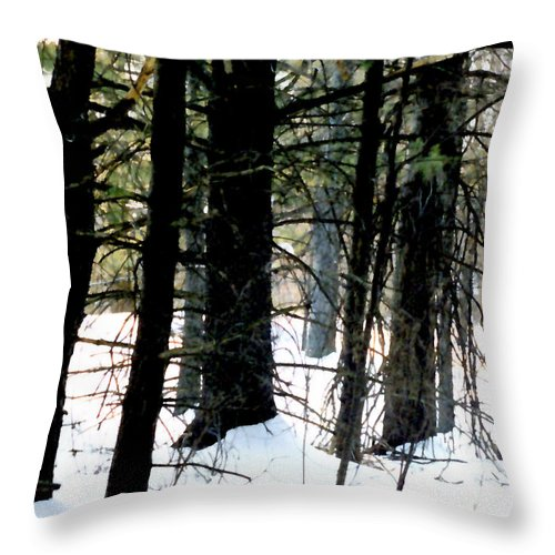 Snow Throw Pillow featuring the painting Blanketed In Snow by Paul Sachtleben