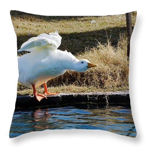 Goose Throw Pillow featuring the photograph Blast Off by Phyllis Denton