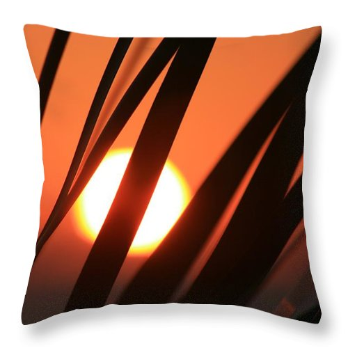 Sun Throw Pillow featuring the photograph Blazing Sunset And Grasses by Nadine Rippelmeyer