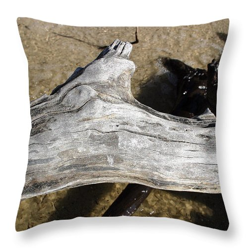 Driftwood Throw Pillow featuring the photograph Bleached Driftwood by Mary Haber