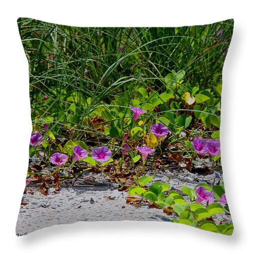 Cross Vines Throw Pillow featuring the photograph Blooming Cross Vines Along The Beach by Barbara Bowen