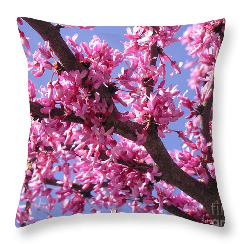 Nature Throw Pillow featuring the photograph Blooming Red Buds by Lucyna A M Green