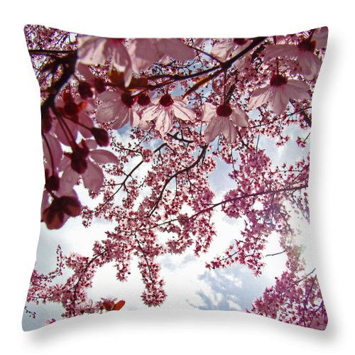 Tree Throw Pillow featuring the photograph Blossom Artwork Spring Flowers Art Prints Giclee by Baslee Troutman
