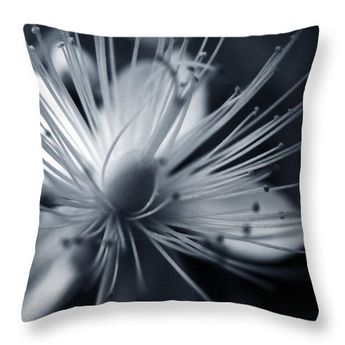 Art Throw Pillow featuring the photograph Blossom by Dorit Fuhg