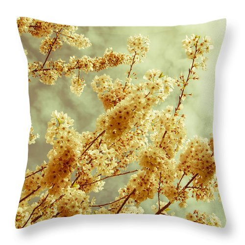 Branches Throw Pillow featuring the photograph Sakura - Tinted by Marilyn Wilson