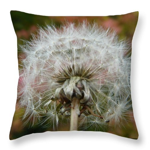 Blowball Throw Pillow featuring the photograph Blowball 2 by Valerie Ornstein
