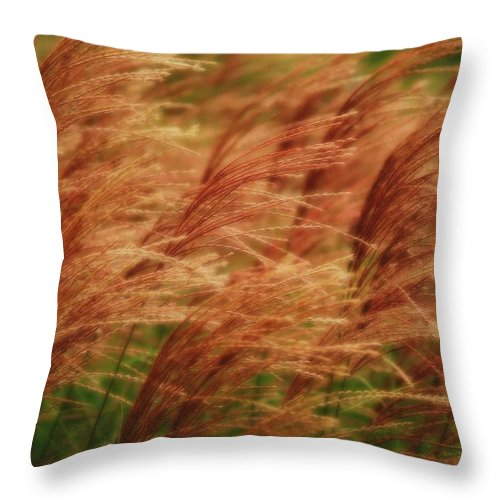 Win Throw Pillow featuring the photograph Blowing In The Wind by Gaby Swanson