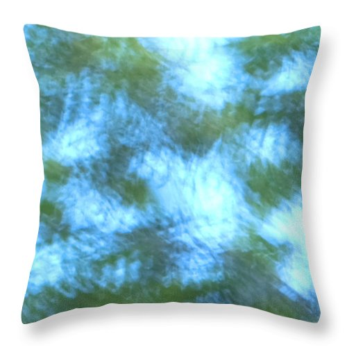 Natanson Throw Pillow featuring the mixed media Blowing In The Wind by Steven Natanson