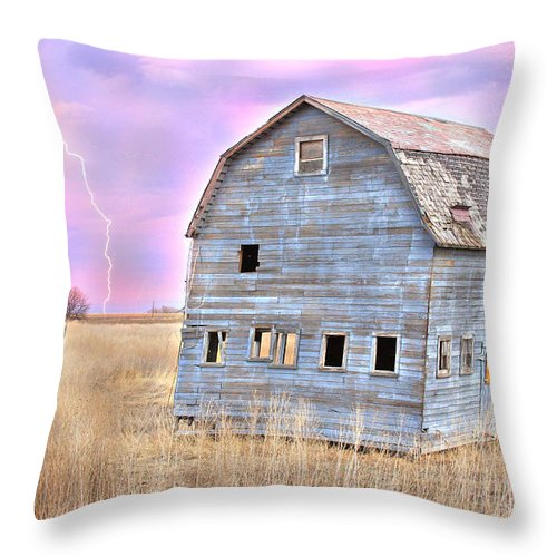 Barns Throw Pillow featuring the photograph Blue Barn by James BO Insogna