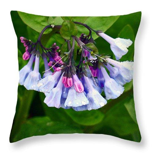 Native Landscape Throw Pillow featuring the photograph Blue Bells by Steve Karol