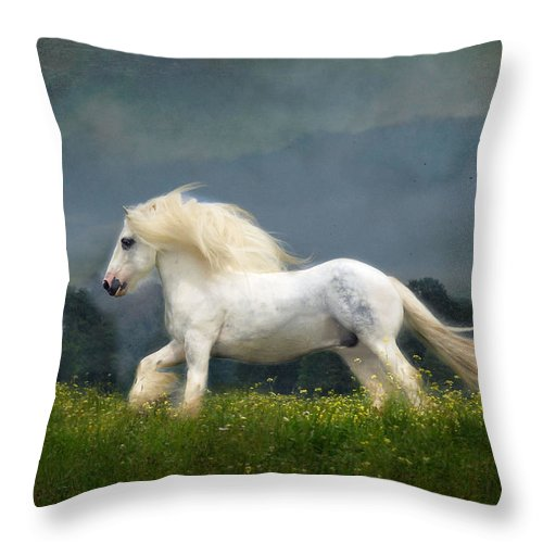 Horses Throw Pillow featuring the photograph Blue Billy C1 by Fran J Scott