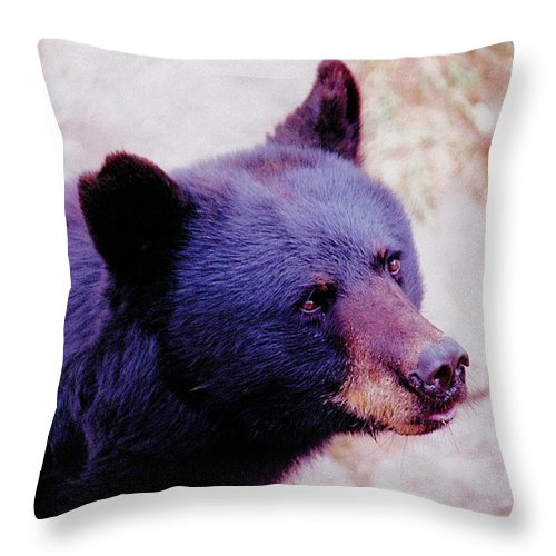Animals Throw Pillow featuring the photograph Blue Boy by Jan Amiss Photography