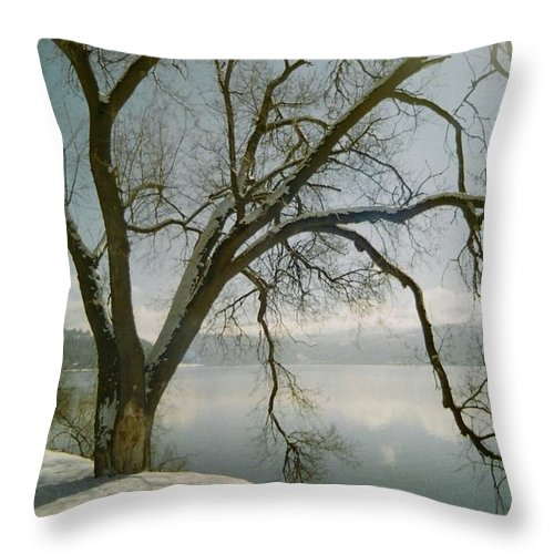Blue Throw Pillow featuring the photograph Blue Dream by Idaho Scenic Images Linda Lantzy
