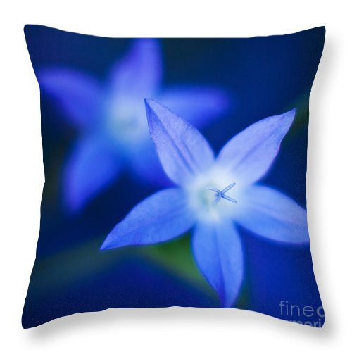 Blue Throw Pillow featuring the photograph Blue Etoile by Mike Reid