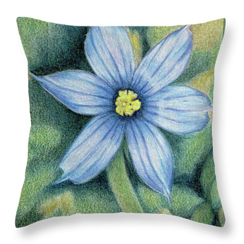 Fuqua - Artwork Throw Pillow featuring the drawing Blue Eyed Grass - 1 by Beverly Fuqua