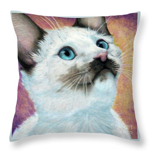 Cats Throw Pillow featuring the drawing Blue Eyed Prayer by Beverly Fuqua