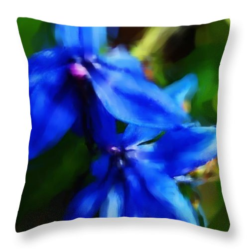Digital Photograph Throw Pillow featuring the photograph Blue Flower 10-30-09 by David Lane